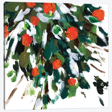 Ripe Tangerines I Canvas Print #WNG1147} by Melissa Wang Canvas Wall Art