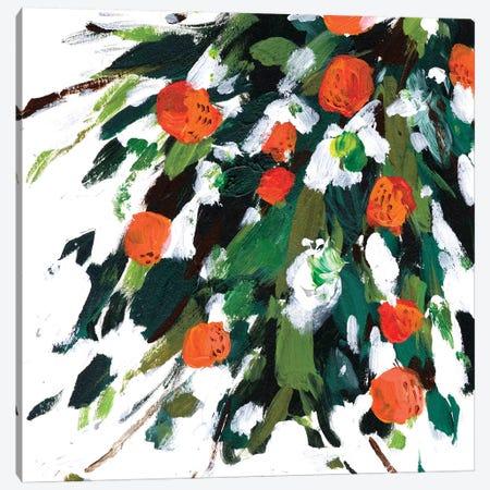 Ripe Tangerines II Canvas Print #WNG1148} by Melissa Wang Canvas Print