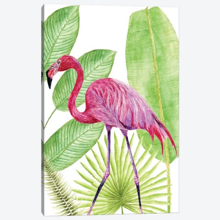 Tropical Flamingo I Canvas Print #WNG119} by Melissa Wang Canvas Wall Art