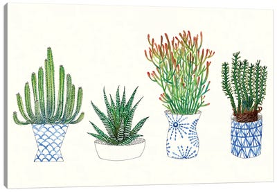 Four Succulents I Canvas Art Print