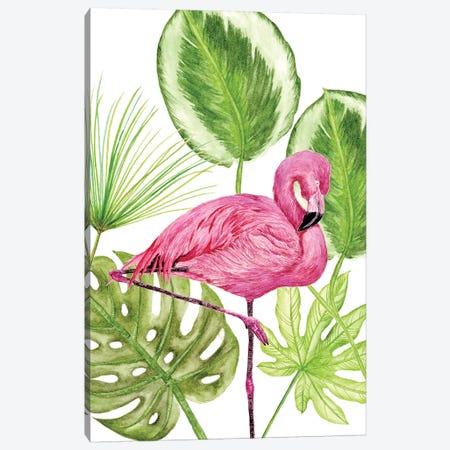 Tropical Flamingo II Canvas Print #WNG120} by Melissa Wang Art Print