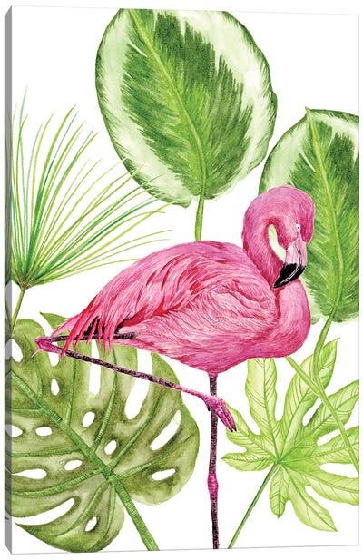 Tropical Flamingo II Canvas Art Print