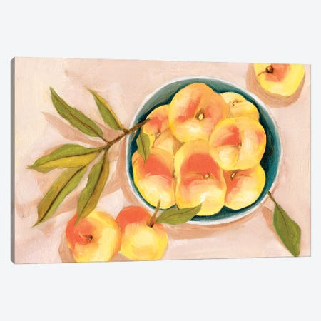 Saturn Peaches II Canvas Print #WNG1246} by Melissa Wang Canvas Art Print