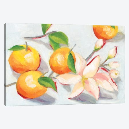 Tangerine Blossoms I Canvas Print #WNG1251} by Melissa Wang Canvas Art Print