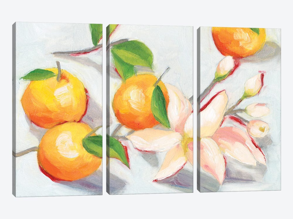 Tangerine Blossoms I by Melissa Wang 3-piece Canvas Wall Art