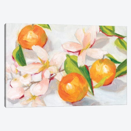 Tangerine Blossoms II Canvas Print #WNG1252} by Melissa Wang Art Print