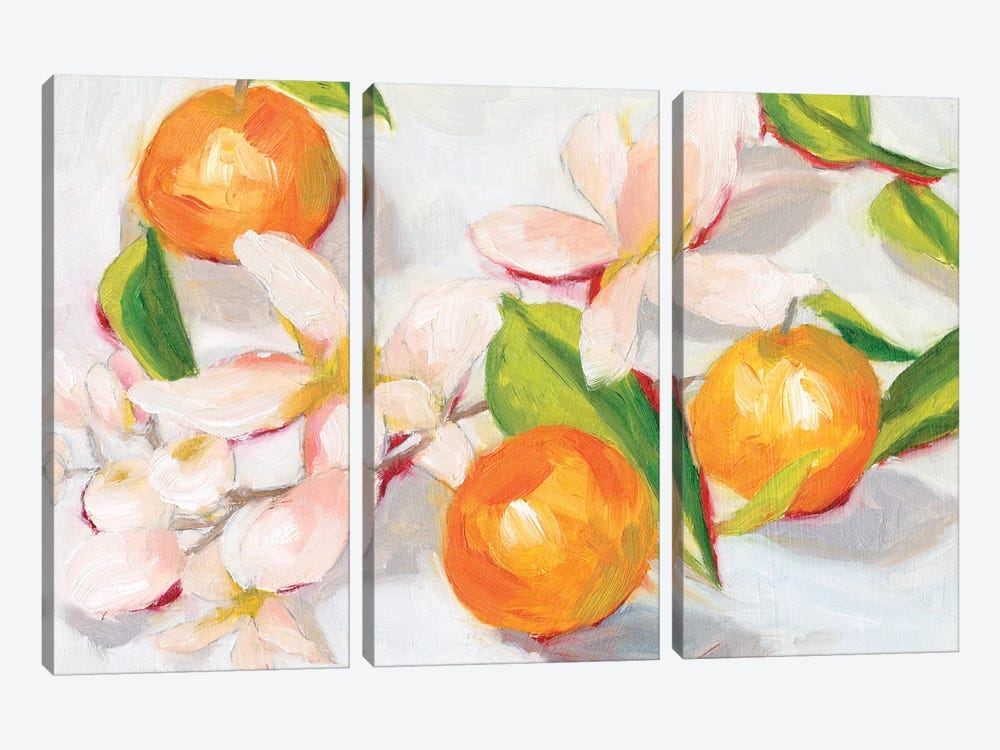 Tangerine Blossoms II by Melissa Wang 3-piece Canvas Print