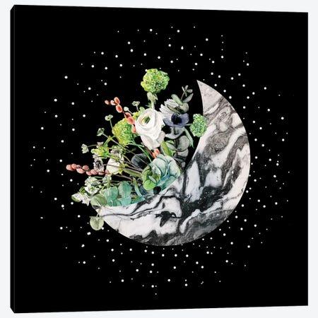 Luna II Canvas Print #WNG1260} by Melissa Wang Canvas Wall Art