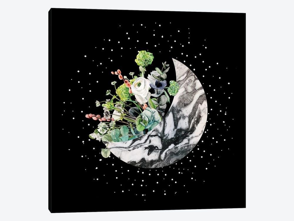 Luna II by Melissa Wang 1-piece Canvas Art