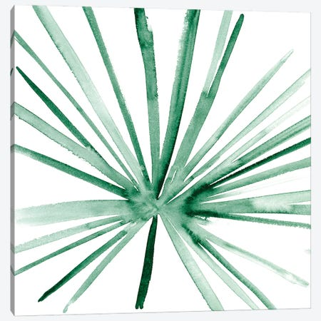 Palm I Canvas Print #WNG1284} by Melissa Wang Canvas Print
