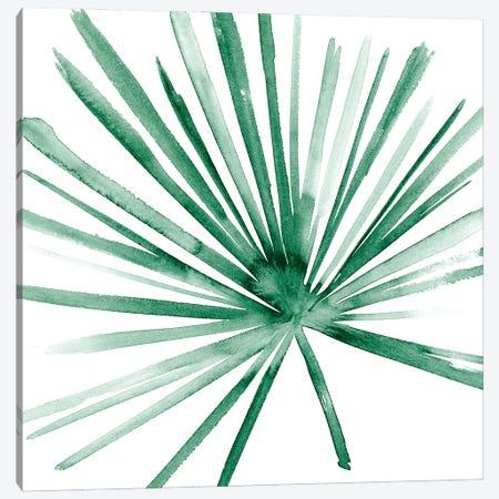 Palm II Canvas Print #WNG1285} by Melissa Wang Canvas Art Print
