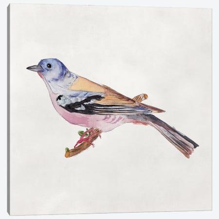 Bird Sketch II Canvas Print #WNG1297} by Melissa Wang Canvas Wall Art