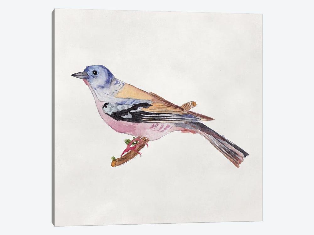 Bird Sketch II by Melissa Wang 1-piece Canvas Wall Art