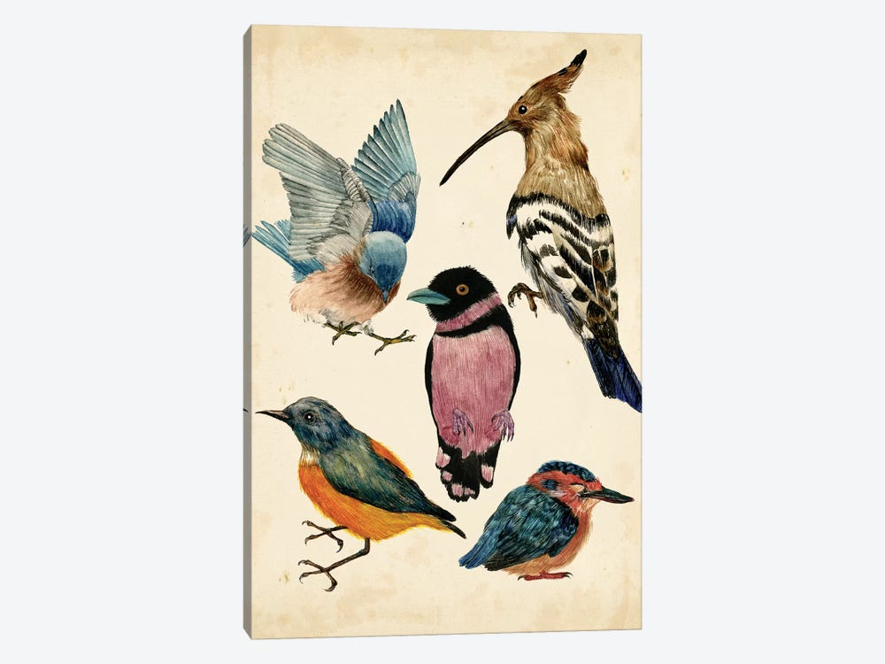 Bird Collection I by Melissa Wang 1-piece Canvas Print