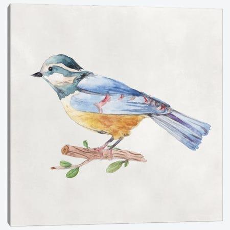 Bird Sketch V Canvas Print #WNG1300} by Melissa Wang Canvas Print