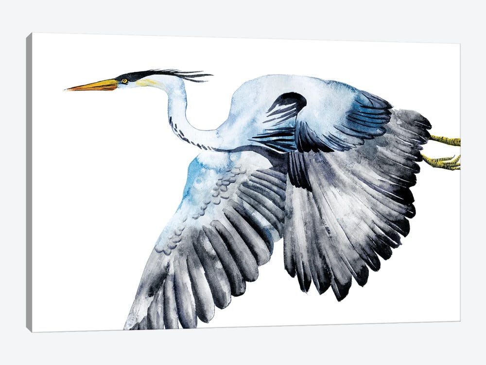 From the Sky II by Melissa Wang 1-piece Canvas Art