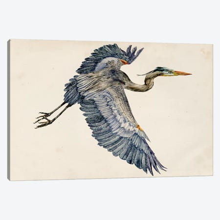 Blue Heron Rendering IV Canvas Print #WNG132} by Melissa Wang Canvas Art