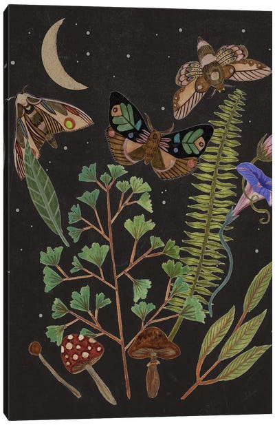 Dark Forest I Canvas Art Print