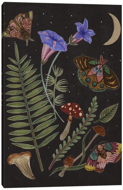 Dark Forest II Canvas Art Print
