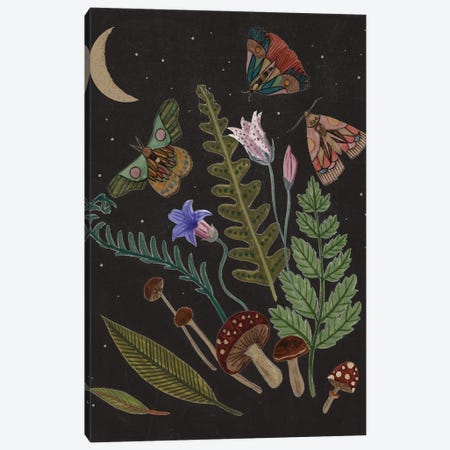 Dark Forest III Canvas Print #WNG1351} by Melissa Wang Canvas Wall Art