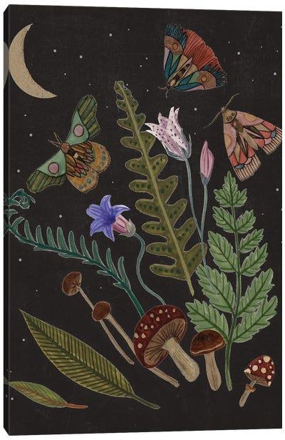 Dark Forest III Canvas Art Print