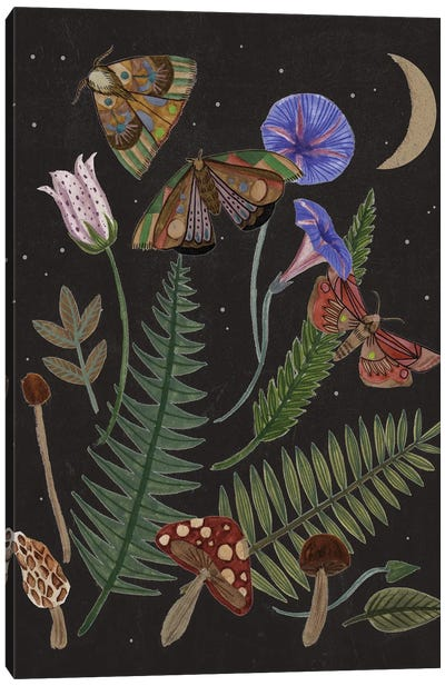 Dark Forest IV Canvas Art Print
