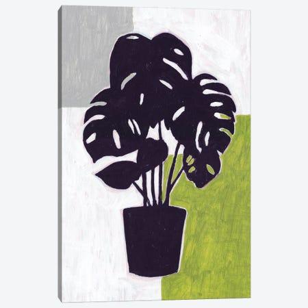 Green Plantling II Canvas Print #WNG1364} by Melissa Wang Canvas Wall Art
