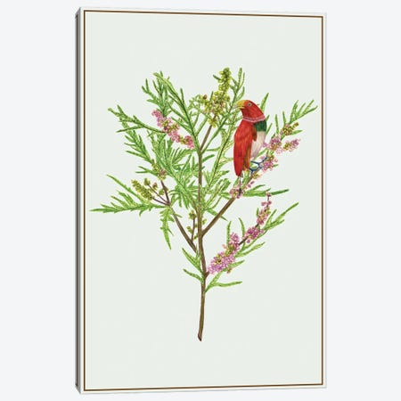 Urtica Cannabina I Canvas Print #WNG143} by Melissa Wang Art Print