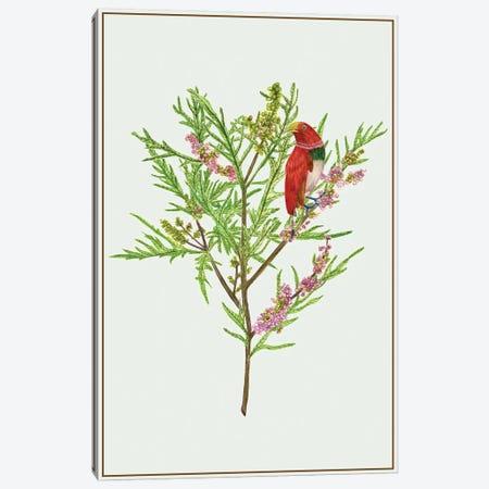 Urtica Cannabina I Canvas Print #WNG143} by Melissa Wang Art Print