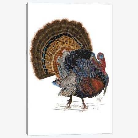 Turkey Study I Canvas Print #WNG1583} by Melissa Wang Canvas Print