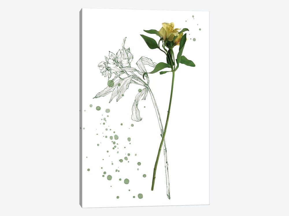 Botany Flower I 1-piece Canvas Art