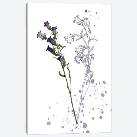 Botany Flower II Canvas Print #WNG167} by Melissa Wang Canvas Wall Art