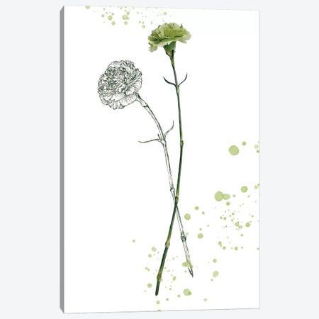 Botany Flower III Canvas Print #WNG168} by Melissa Wang Canvas Print