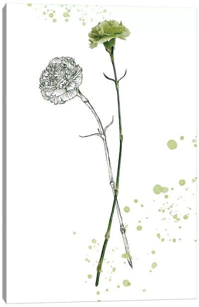 Botany Flower III Canvas Art Print