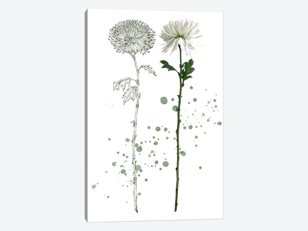 Botany Flower IV by Melissa Wang 1-piece Art Print