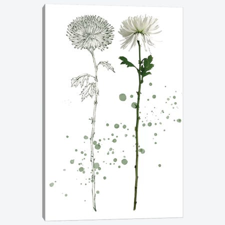 Botany Flower IV Canvas Print #WNG169} by Melissa Wang Art Print