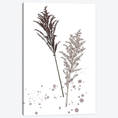 Botany Flower VI Canvas Print #WNG171} by Melissa Wang Canvas Art