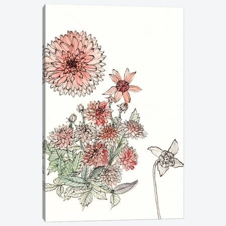 Dahlia Study Canvas Print #WNG183} by Melissa Wang Art Print