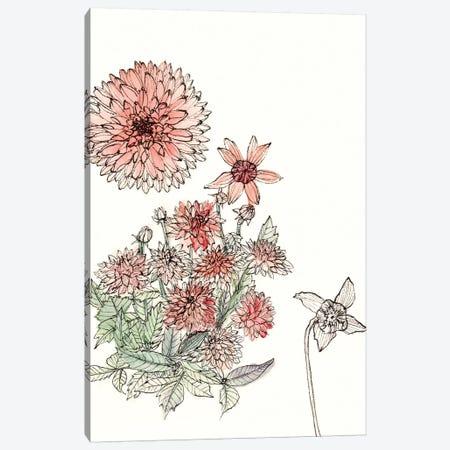 Dahlia Study Canvas Print #WNG183} by Melissa Wang Art Print
