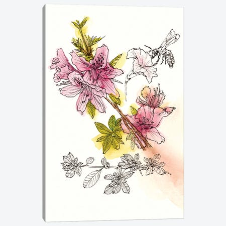 Floral Field Notes I Canvas Print #WNG201} by Melissa Wang Canvas Art