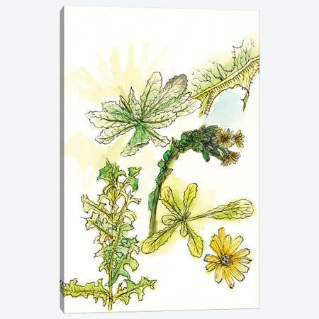 Floral Field Notes V Canvas Print #WNG205} by Melissa Wang Art Print