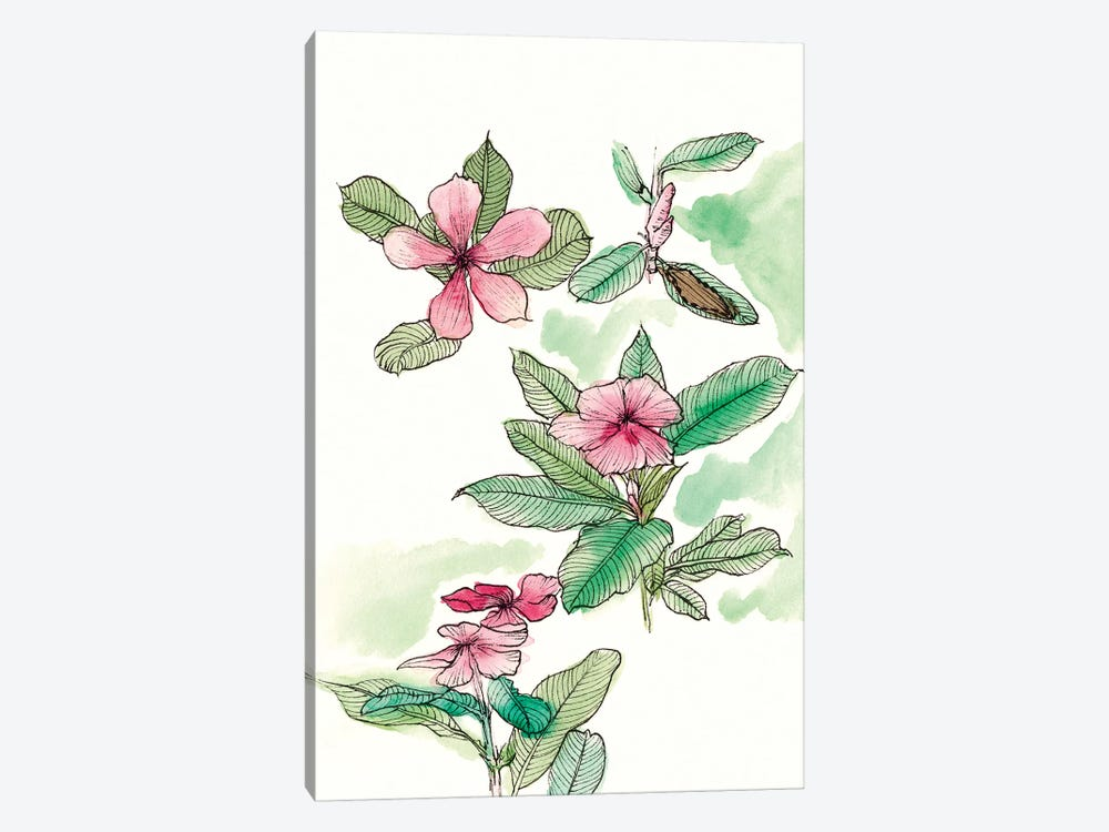 Floral Field Notes VI by Melissa Wang 1-piece Canvas Wall Art