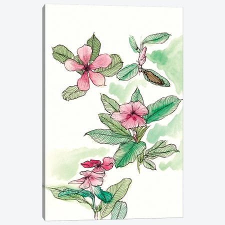 Floral Field Notes VI Canvas Print #WNG206} by Melissa Wang Canvas Print