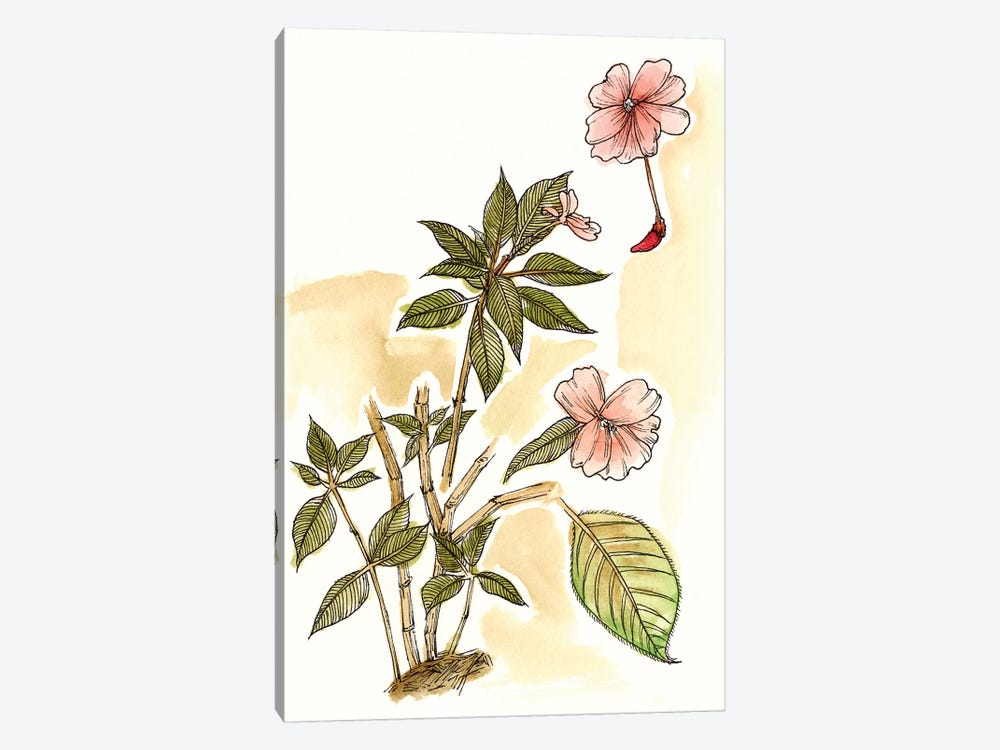 Impatiens Study by Melissa Wang 1-piece Art Print