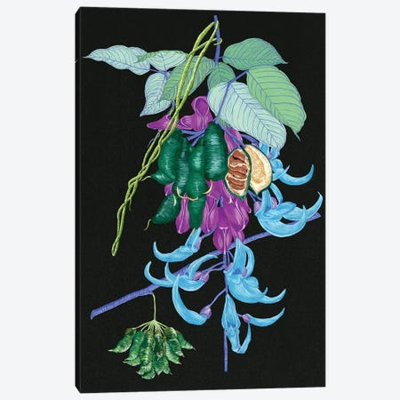 Jade Vine I Canvas Print #WNG210} by Melissa Wang Canvas Art Print