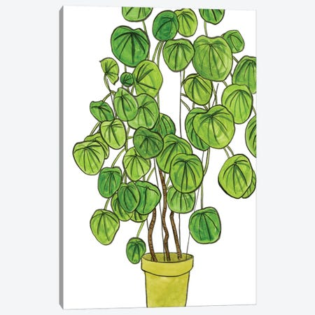 Potted Jungle II Canvas Print #WNG236} by Melissa Wang Canvas Artwork