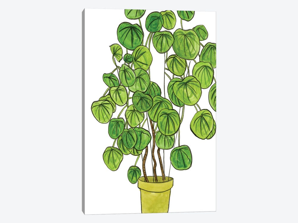 Potted Jungle II 1-piece Canvas Print