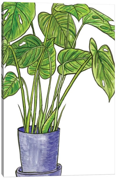 Potted Jungle III Canvas Art Print