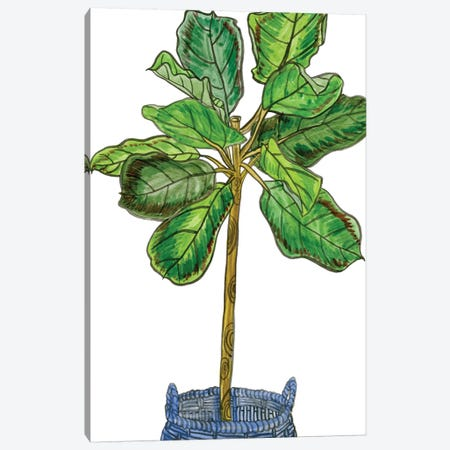 Potted Jungle IV Canvas Print #WNG238} by Melissa Wang Art Print