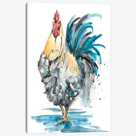 Rooster Splash II Canvas Print #WNG244} by Melissa Wang Art Print